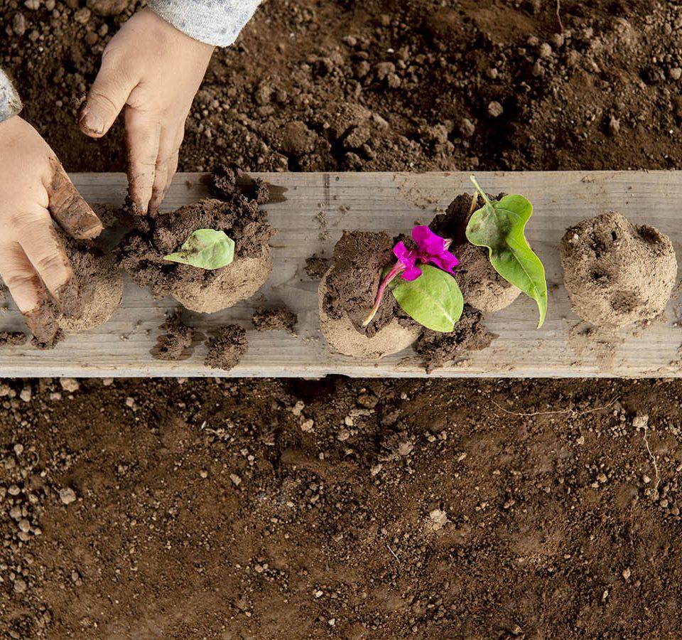 かもと乳児保育園 自然素材 土で遊ぶ