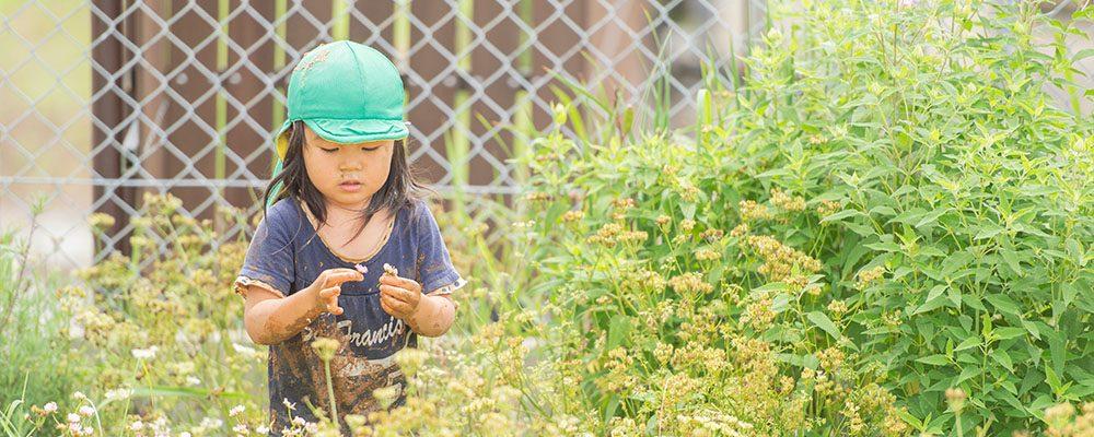 園庭で遊ぶ 保育の特徴